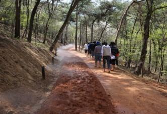 걸으면 보험료 할인 시대....영광 물무산 행복숲을 걷자!